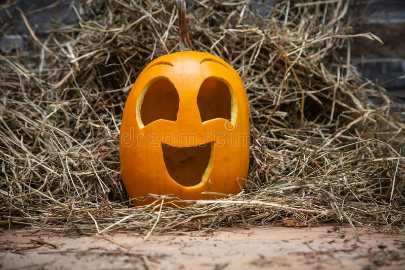 Yellow and happy smiling pumpkin. Halloween symbol on a gray stone wall background, stands on a hay and a wooden stand. Jack o royalty free stock image