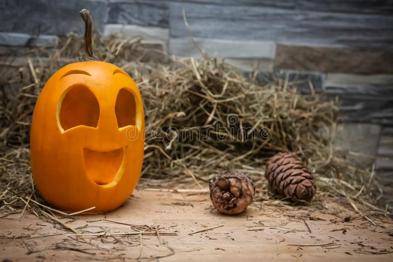 Yellow and happy smiling pumpkin. Halloween symbol on a gray stone wall background, stands on a hay and a wooden stand. Jack o. Lantern with fir cones near it stock images