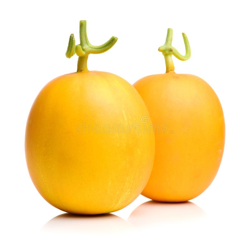 Yellow honeydew melons. Isolated on white background stock photo