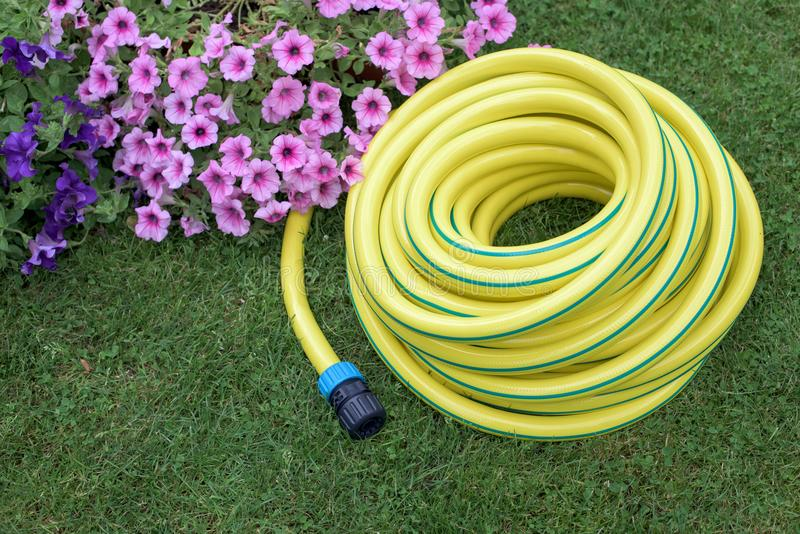 Yellow hose pipe on a grass royalty free stock images