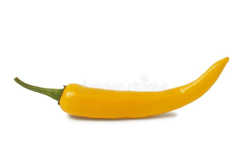 Yellow hot chili pepper royalty free stock image