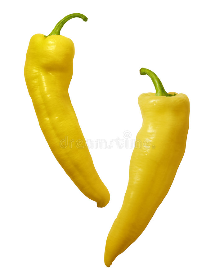 Yellow Hot Peppers. Isolated on a white background. Isolation is on a transparent layer in the PNG format royalty free stock photography