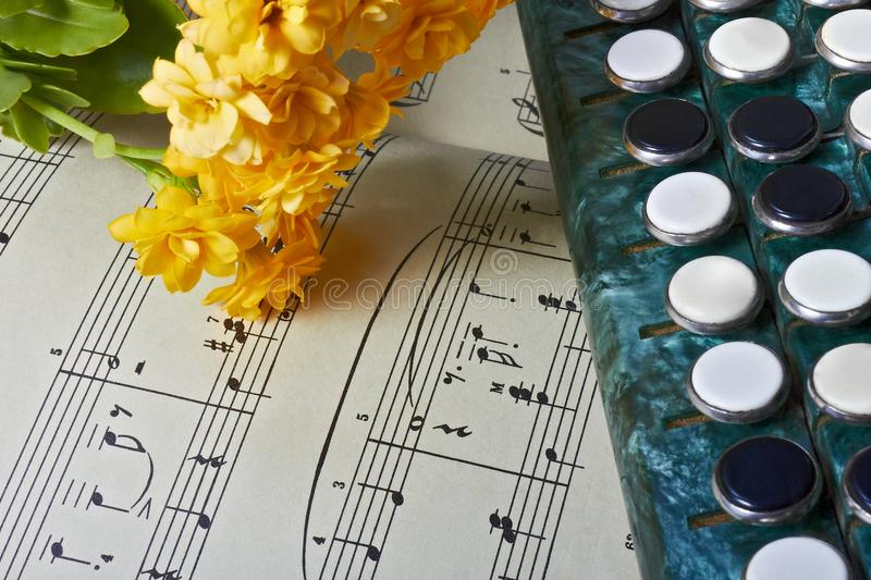 Yellow Kalanchoe flowers lie on musical notes next to accordion keys royalty free stock images