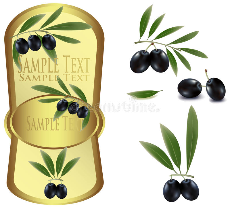 Yellow label with black olives. Photo-realistic illustration. Yellow label with black olives vector illustration