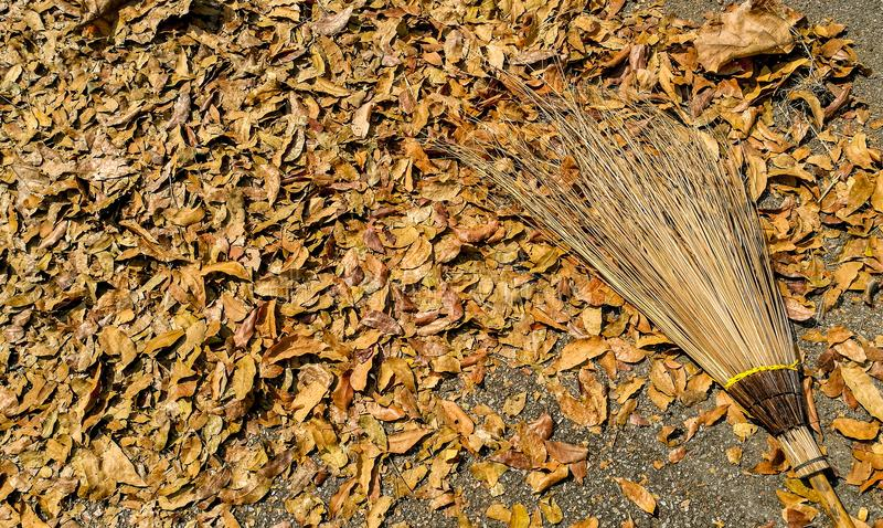 yellow leaves and broomstick royalty free stock photos