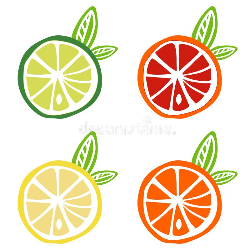 Yellow lemon green lime orange red grapefruit icon fruit citrus vector illustration