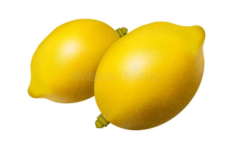 Yellow Lemons stock images