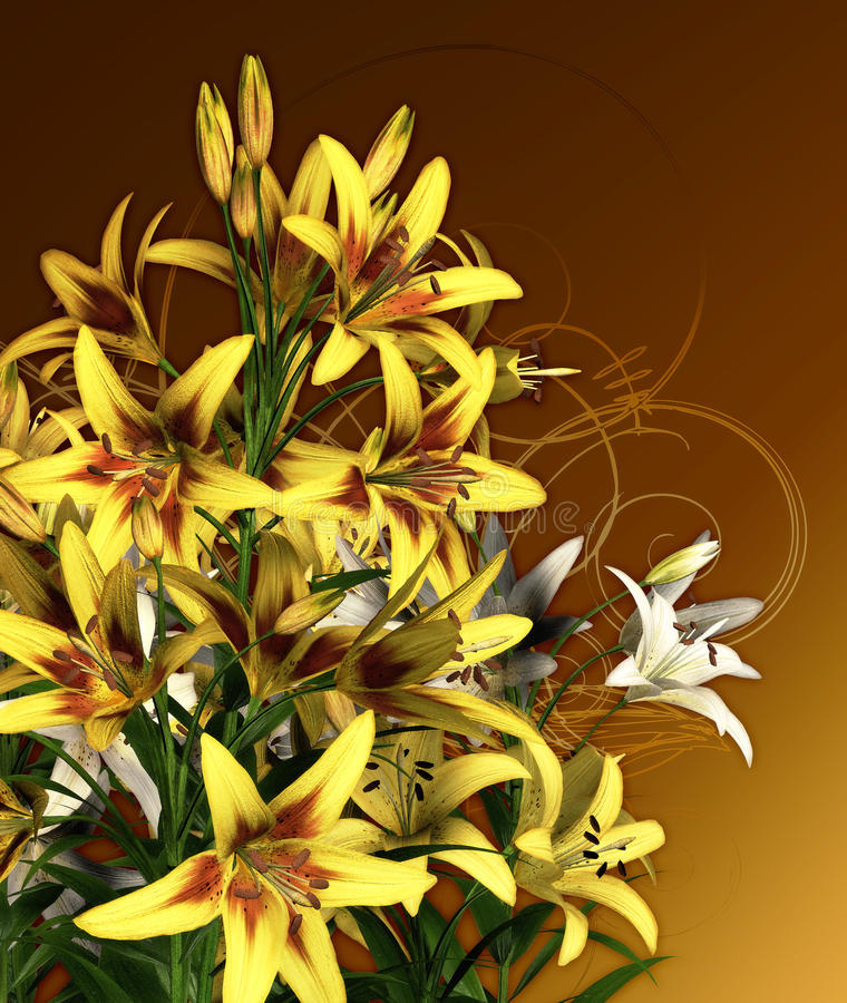 Download Yellow Lilies stock illustration. Illustration of card - 24524586