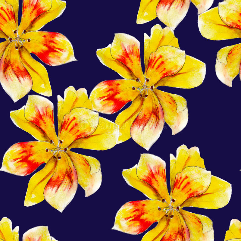 Yellow lily flower watercolor seamless pattern. Bright tropical flowers isolated on blue background. royalty free illustration