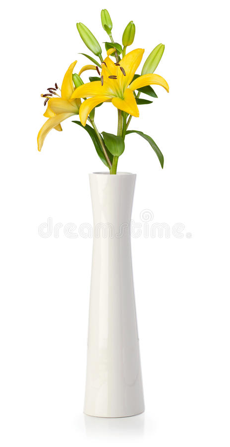 Download Yellow lily in white vase stock image. Image of macro - 24651477