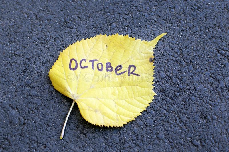 Yellow linden leaf on which is written `October`. royalty free stock photos