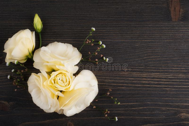 Yellow lisianthus flowers. On dark wooden background flat lay stock photo