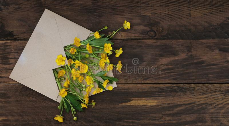 Yellow Little field flowers in Envelope Rustic Wooden Background Banner Flat Lay. Yellow Little field flowers in Envelope Rustic Wooden Background Banner royalty free stock photos