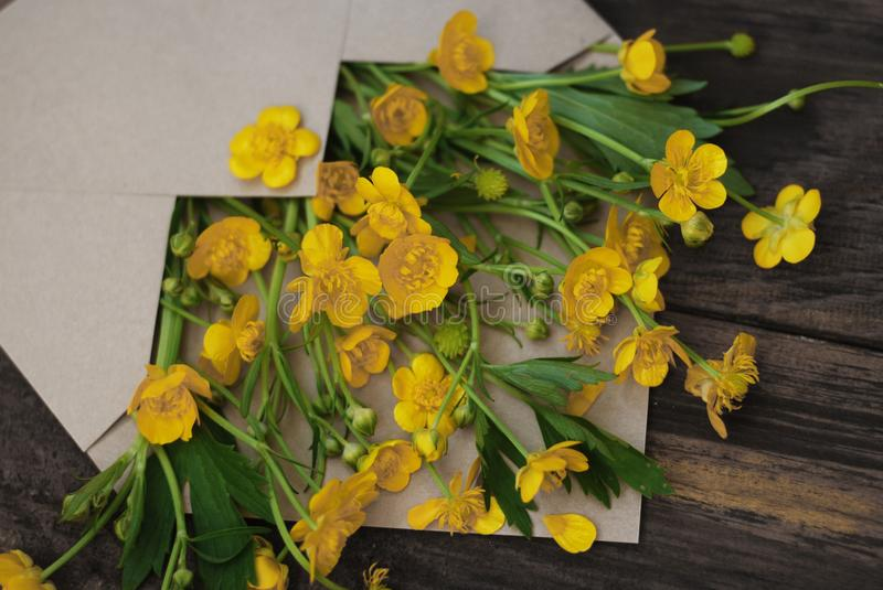 Yellow Little Flowers in Envelope Rustic Wooden Background Banner Flat Lay. Yellow Little Flowers in Envelope Rustic Wooden Background Banner stock images