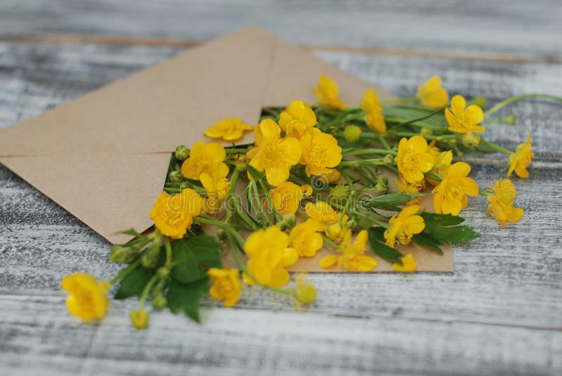 Yellow Little Flowers in Envelope Rustic Wooden Background Flat Lay. Yellow Little Flowers in Envelope Rustic Wooden Background stock image