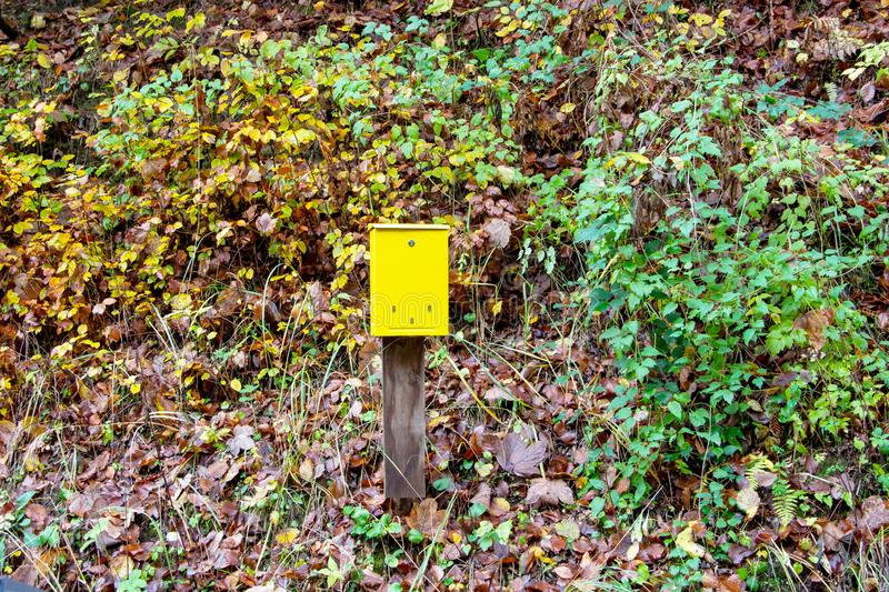 A yellow mailbox in the middle of a forest royalty free stock photography