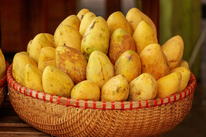 Yellow mango in a basket on the market stock images