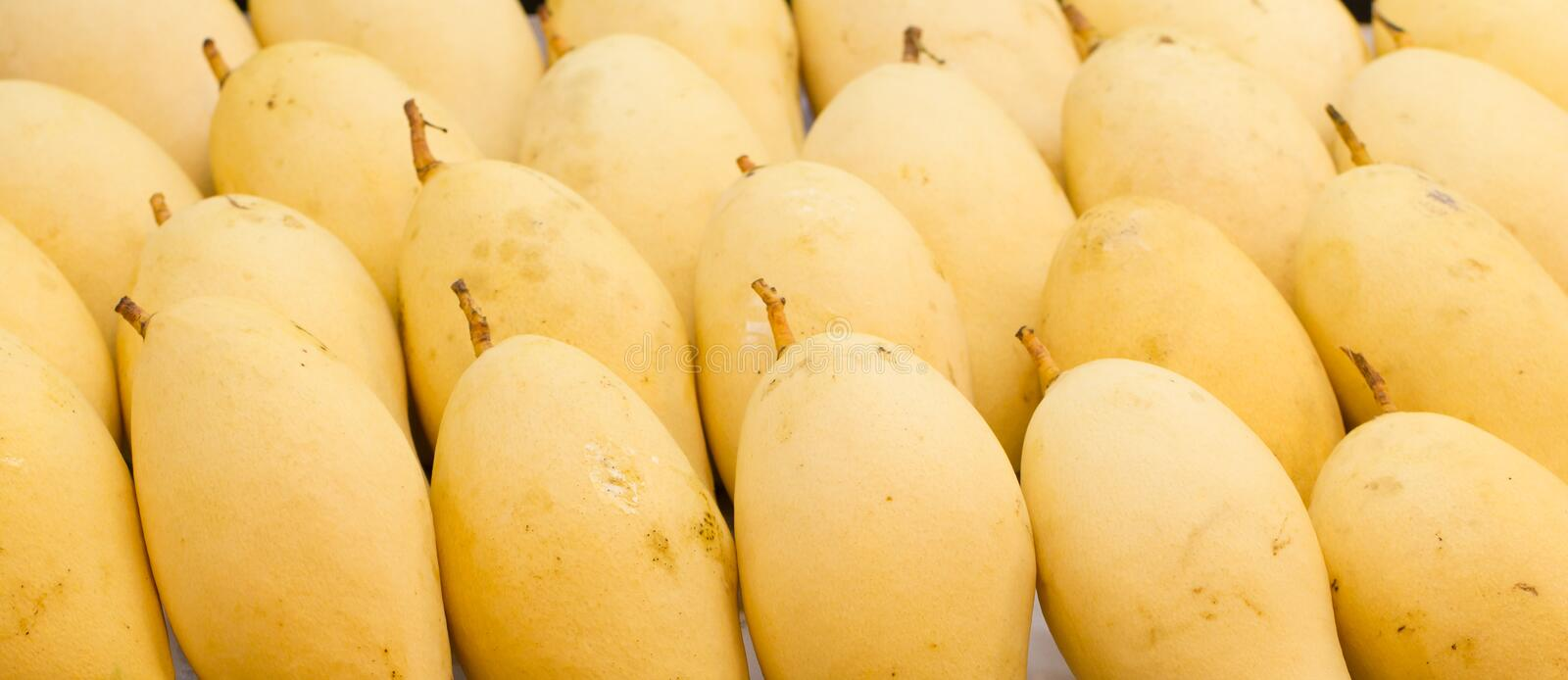Yellow Mango in Market royalty free stock images