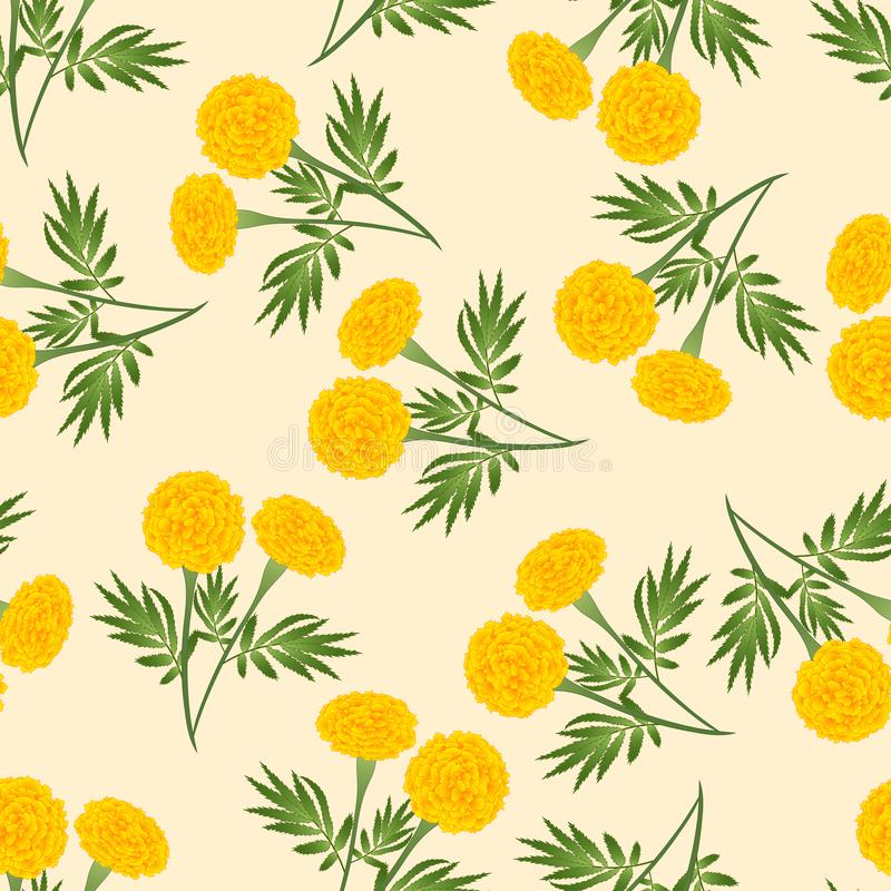 Yellow Marigold Seamless on Beige Ivory Background. Vector Illustration.  vector illustration