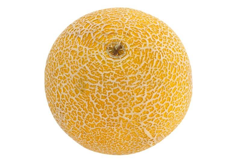 Download Yellow melon stock photo. Image of fruit, orange, eating - 25787784
