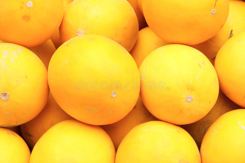 Yellow melon. The background of yellow melon stock photography