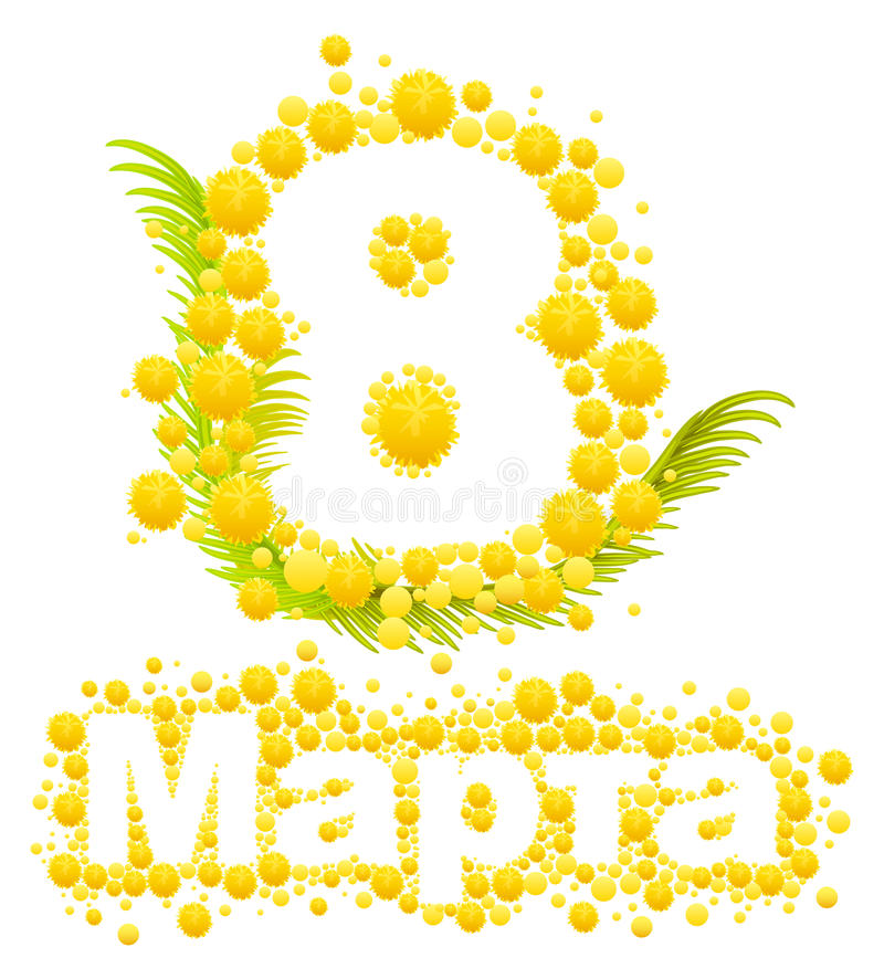 Yellow Mimosa Flower Mimosa Flower Symbol Of Womens Day