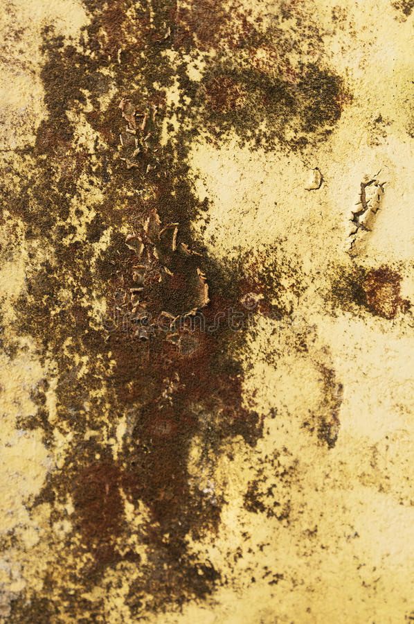 Download Yellow mud wall stock photo. Image of texture, yellow - 21969948