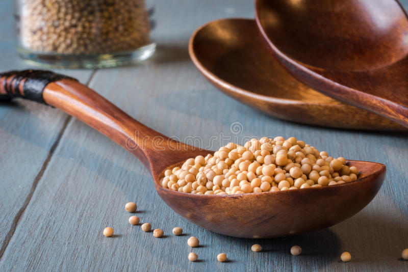 Yellow Mustard Seeds on a Wood Spoon. Close up view of yellow mustard seeds on a wood spoon royalty free stock images