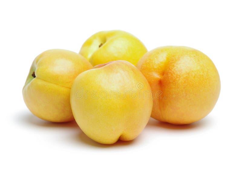 Yellow nectarine. Isolated on white Background royalty free stock photos