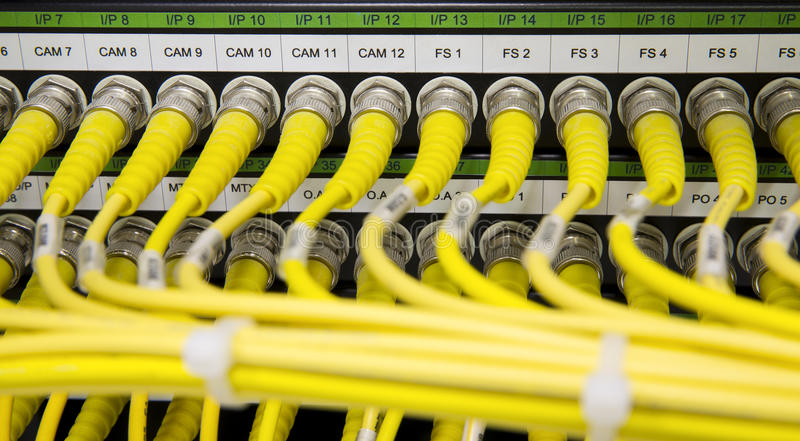 Yellow Network cables connected to the server royalty free stock photography