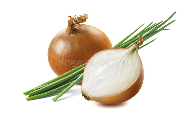 Yellow onion half green scallion 1 isolated on white background stock photography
