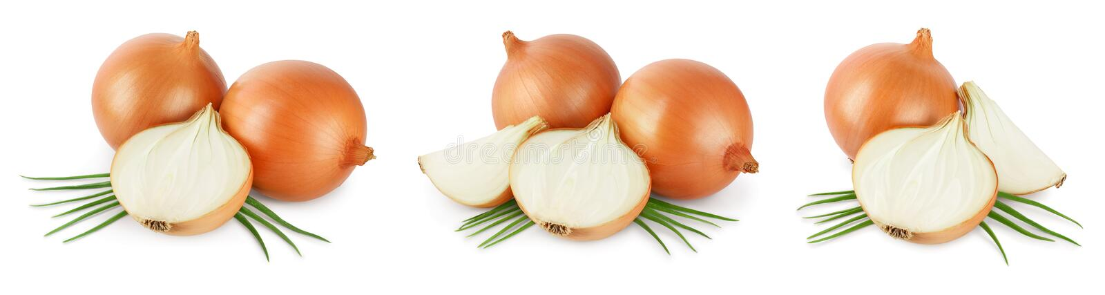Yellow onion isolated on white background close up. Set or collection stock photography