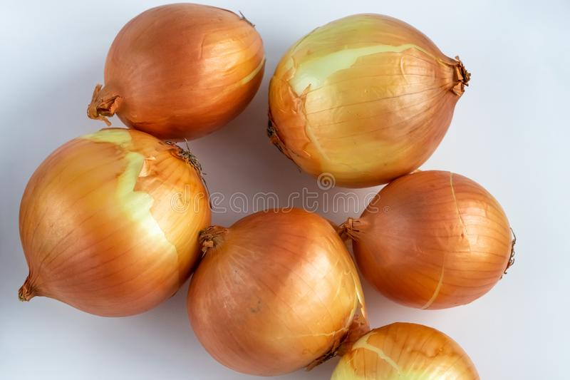 Yellow onion on white background. A pile of raw onions close-up. Top view. stock images