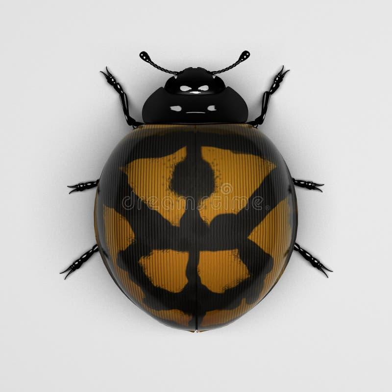 Download The yellow-orange ladybird stock illustration. Image of yellow - 23652941