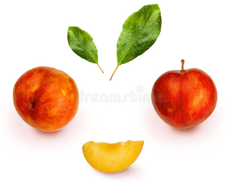 Yellow and orange plums variety known as honey or mirabelle isolated on white background. They include whole plums, segments. And leaves. Color yellow, orange stock images