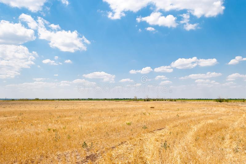 Beveled field, blue sky and clouds royalty free stock photos