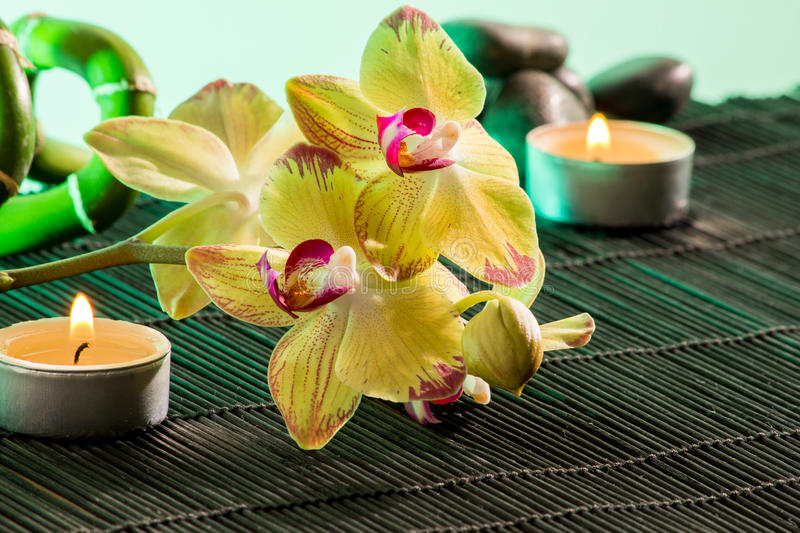 Yellow orchids. With black background Candles and Bamboo with stone royalty free stock photos
