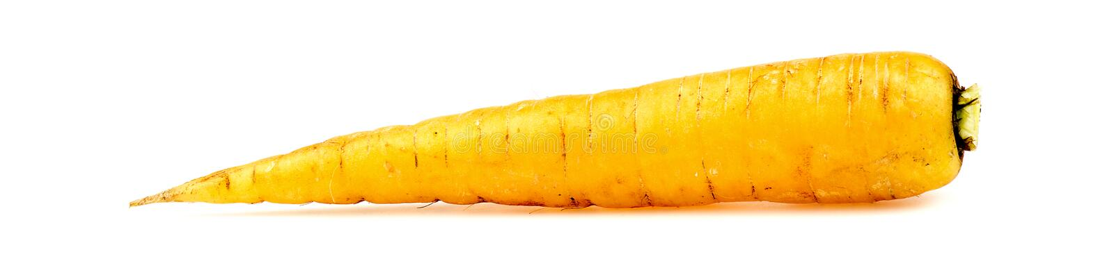 Yellow organic carrot isolated on white. Detailed stock photo