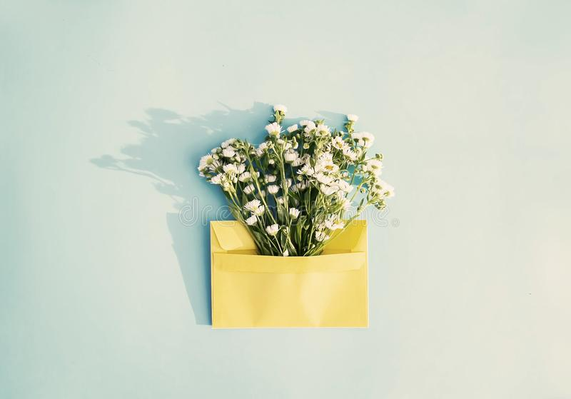 Yellow paper envelope with small garden white chamomile flowers on light blue background. Festive floral template. Greeting card d royalty free stock images