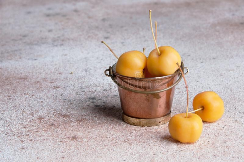 Yellow paradise apples in a vintage copper bucket. On concrete background. Copy space for text stock image
