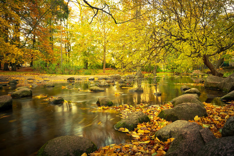 Download Yellow Park Scenery In The Autumn Stock Image - Image: 27384419
