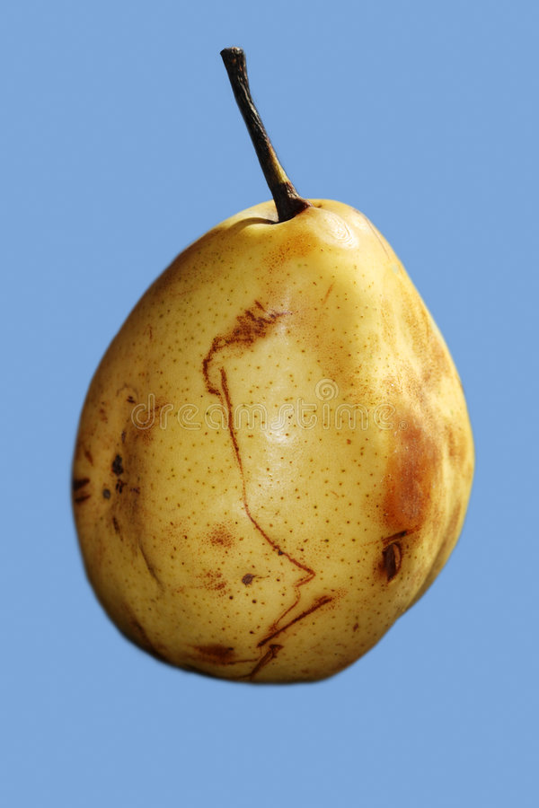 Free Yellow Pear Stock Photography - 3397802