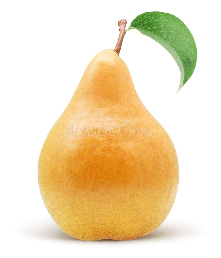 Yellow pear isolated on a white background royalty free stock photography
