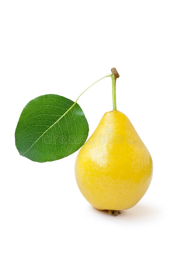 Free Yellow Pear With Green Leaf Stock Photo - 10668370
