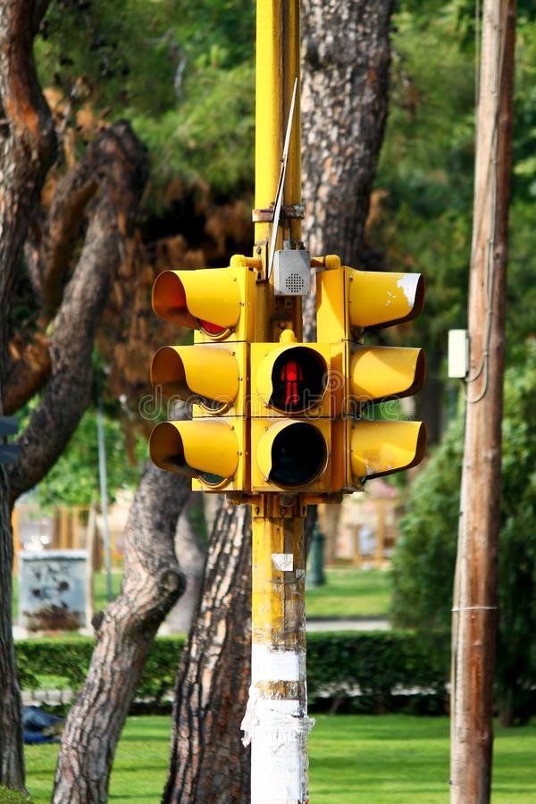 Yellow pedestrian traffic light showing red. On a green background trees stock photos