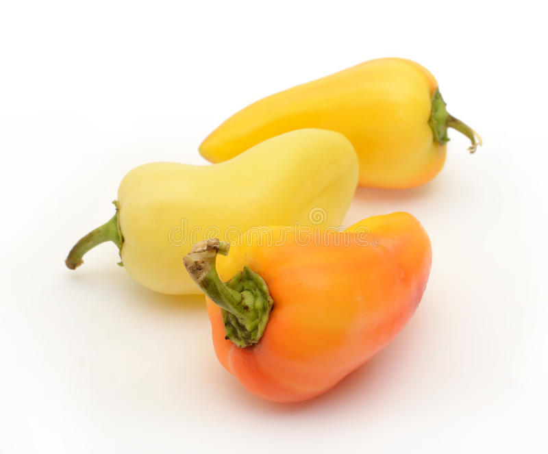 Yellow pepper on white stock image