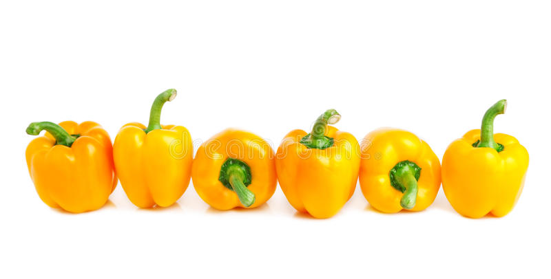 Yellow peppers. Border of bright yellow peppers isolated on white royalty free stock photos