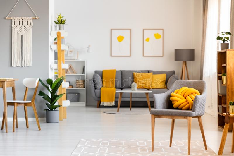 Yellow pillow on grey armchair in spacious flat interior with po. Sters above sofa with blanket. Real photo royalty free stock images