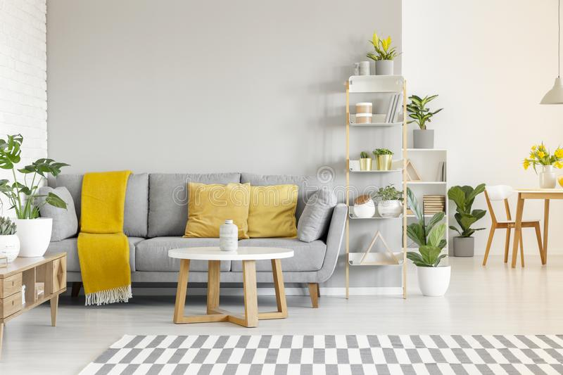 Yellow pillows and blanket on grey sofa in modern living room in stock photo