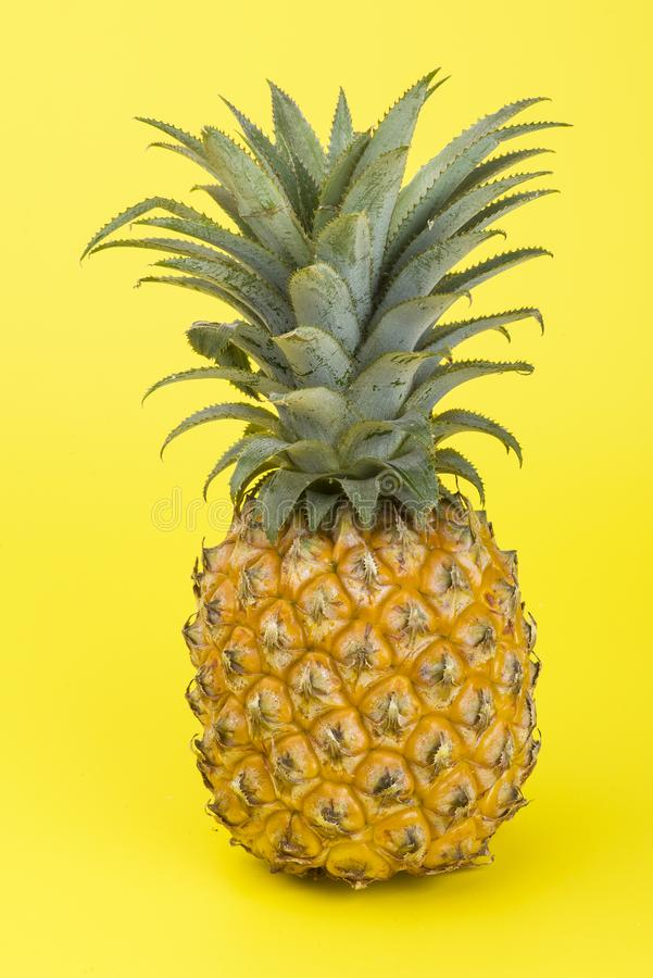 A yellow pineapple isolated on yellow. Creative tropical fruit concept. A yellow pineapple isolated on yellow background. Creative tropical fruit concept royalty free stock photography